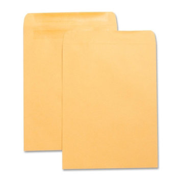 Business Source Catalog Envelopes w/Adhesive Strip Plain