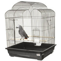 A & E Cage Co Victorian Small Bird Cage Color: Pure White