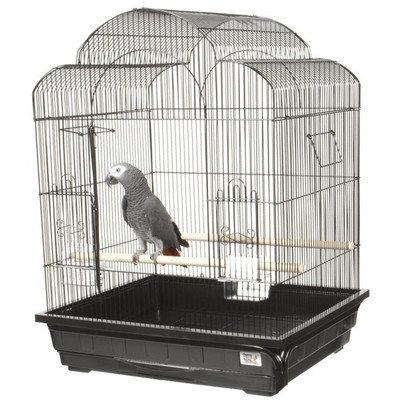 A & E Cage Co Victorian Small Bird Cage Color: Pure White