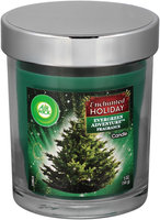 Air Wick® Enchanted Holiday™ Evergreen Adventure™ Fragrance Candle 5 oz. Jar