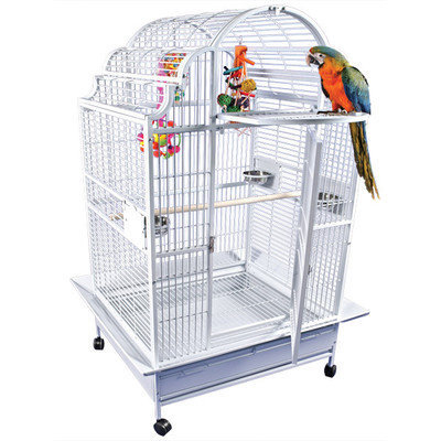 A & E Cage Co Large Victorian Top Bird Cage Color: Stainless Steel