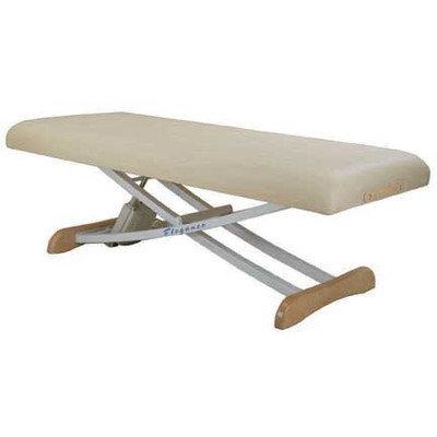 Customcraftworks Elegance Basic Electric Massage Table Color: Black