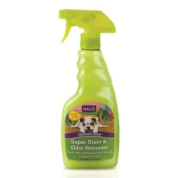 Halo HolistiClean Stain and Odor Remover for Dogs, 16oz