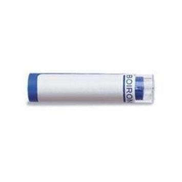 Boiron - Arnica Montana 6 X Md, 80 pellets Health and Beauty