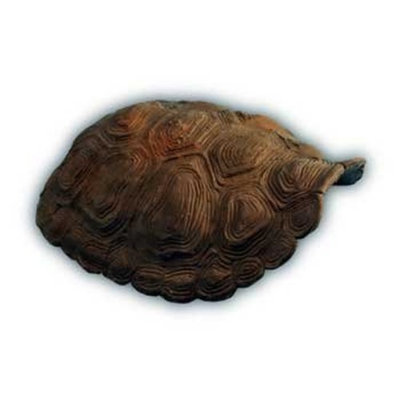 Conceptual Creations SCC1286 Traditional Tortoise Small Animal Shell Hide