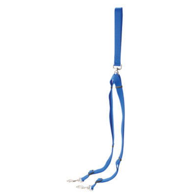 Coastal Pet Products Personalized Double Walker Dog Leash