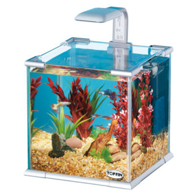 Top FinA Glass Aquarium
