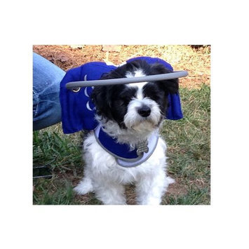 Muffin's Blind Dog Clubhouse Muffin's Halo Guide for Blind Dogs, Small (Blue)
