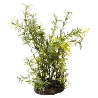 National GeographicTM Aquarium Plant