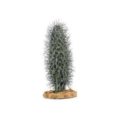 Zilla 11425 10-Inch Desert Series Cactus Terrarium Plant, Madagascar Palm