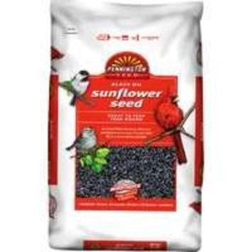 Pennington Seed Black Oil Sunflower Seed Wild Bird Food, 50lb
