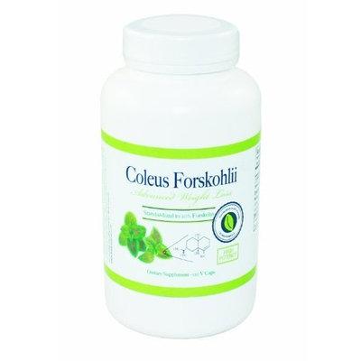 Coleus Forskohlii 125mg   20 Forskolin BodySuperior Coleus Forskohlii 20%, 120 Capsules