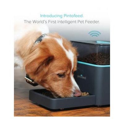 Pintofeed Pet Feeder