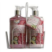 Nature's Intent Raspberry Plumeria Hand Wash And Hand Lotion Set