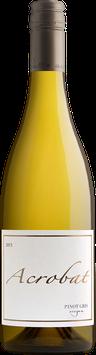 King Estate Acrobat Pinot Gris