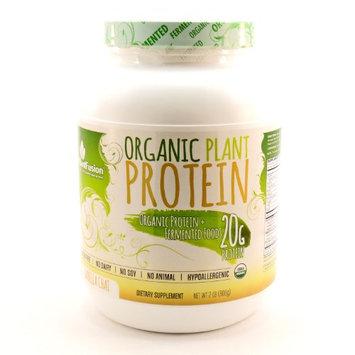 Organic Plant Protein Vanilla Chai PlantFusion 2 lb Powder
