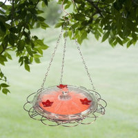 Woodstream Hummingbird W Birdscapes 224 Oasis 8-Ounce Glass Top Hummingbird Feeder (Discontinued by Manufacturer)