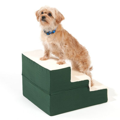 Doctors Foster & Smith Dura Ruff Indoor 3-Step Pet Stair (Green)