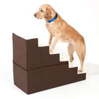 Doctors Foster & Smith Dura Ruff Indoor 6-Step Pet Stair (Brown)