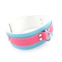 Fresh Collar With Buckle, 2-inch, Pink/blue