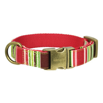 Waverly Fashion Canvas Dog Collar - MultiColor (Small)