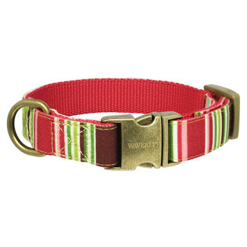 Waverly Fashion Canvas Dog Collar - MultiColor (Medium)