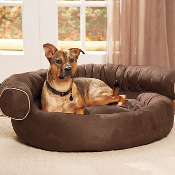 Doctors Foster & Smith Chesterfield Bolster Oval Pet Bed (Brown)