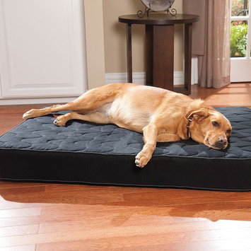 Doctors Foster & Smith Super Deluxe Orthopedic Pet Bed (Black)