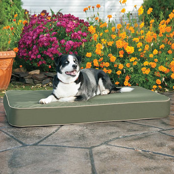 Doctors Foster & Smith Dura Ruff Indoor Outdoor Orthopedic Pet Bed (Green)