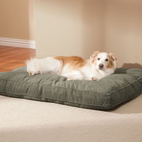 Doctors Foster & Smith Simply Suede Rectangular Pet Bed (Green)