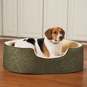 Doctors Foster & Smith Double Support Slumber Print Pet Bed (Green)