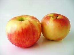 Fresh Honeycrisp Apples