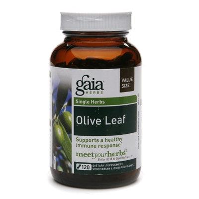 Gaia Herbs Olive Leaf