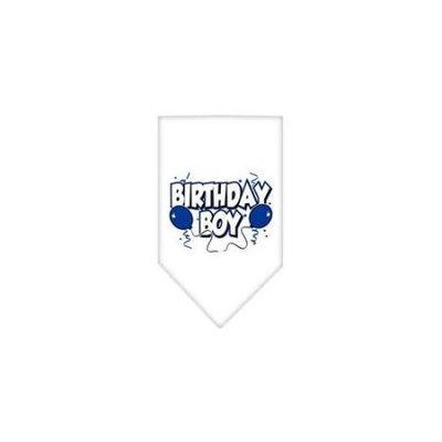 Ahi Birthday Boy Screen Print Bandana White Small