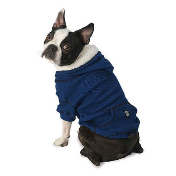 PetRageous Designs Bentley's Fur-lined Pet Hoodie, Size: XS (Blue)