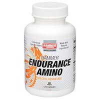 Hammer Nutrition Endurance Amino One Color, One Size