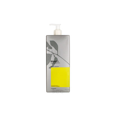 Framesi Hair Treatment Oily Hair Shampoo Liter