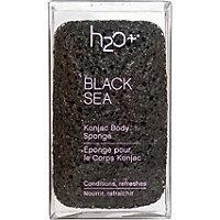 H2O Plus Black Sea Konjac Sponge
