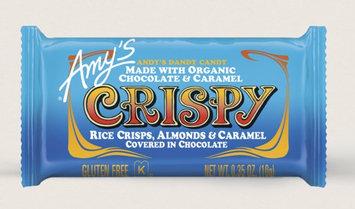 Amy's Kitchen Crispy Candy Bites
