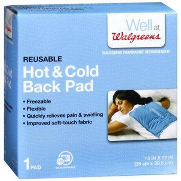 Walgreens Hot & Cold Back Pad
