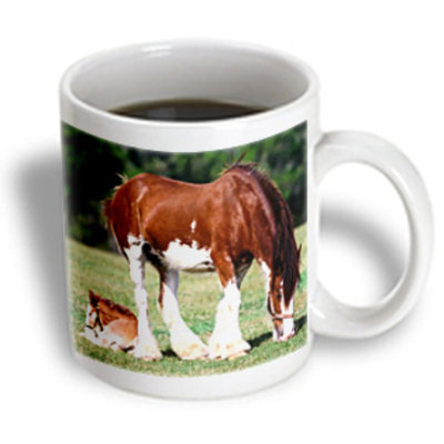 Recaro North 3dRose - Florene Animals - Clydesdale Mare And Foal horses - 11 oz mug