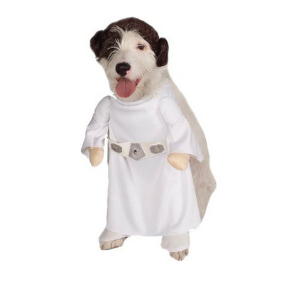 Buy Seasons Star Wars Princess Leia Pet Costume - S