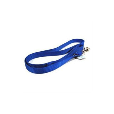 Hamilton Pet Products Single Thick Nylon Lead with Snap in Blue