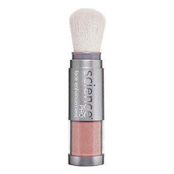 Colorescience Blush Brush Just Barely