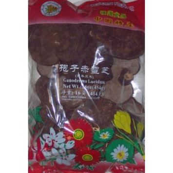 Golden Flower Brand Ganoderma Lucidum 16oz Pack