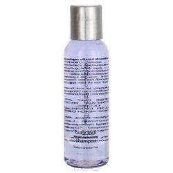 Simply Smooth Xtend Color Lock Keratin Replenishing Shampoo - 2 oz / travel size