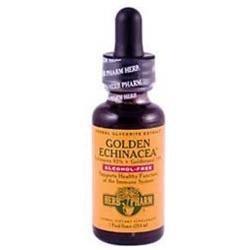 Herb Pharm - Golden Echinacea Glycerite - 1 oz.