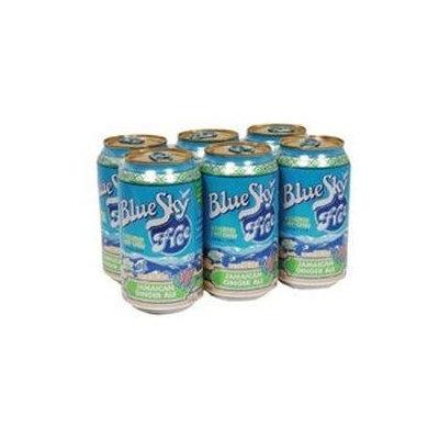 Blue Sky Herbal Jamaican Ginger Ale 12 Oz Pack of 4