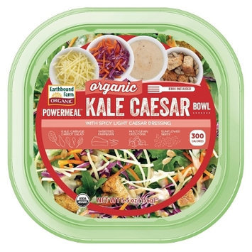 Earthbound Farm The Organic Kale Caesar Salad Kit
