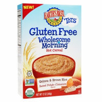 Earth's Best Gluten Free Wholesome Morning Quinoa & Brown Rice, Sweet Potato Cinnamon, 12 oz